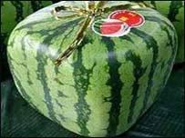 A square wattermelon...XD!