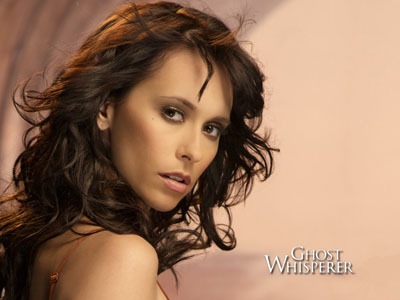 I've been watching some episodes of Ghost Whisperer, new ones and old, and I'm confused; does/did her husband die?