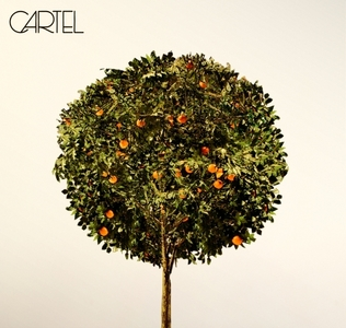 Post a Picture of an Album Cover da your preferito Band/Singer/Group (it doesn't matter which one it just has to be da them)(i will also give te a omaggio because i want to :D)