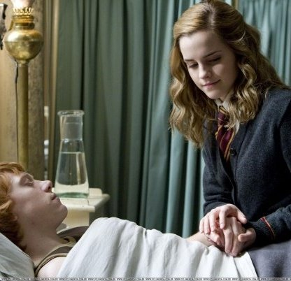 Whats the best thing that Du Liebe about Ron and Hermione???