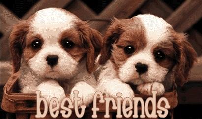 Can you plz cadastrar-se the 'Friends Forever♥' spot?