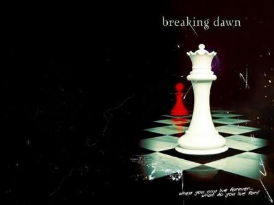 What Do आप Think About Making the Break Dawn As 2 Chapters Not 1 ????