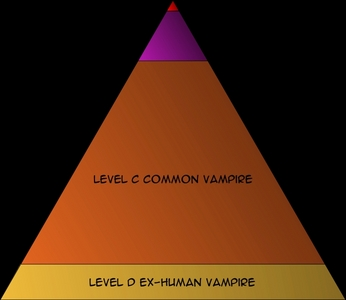 yes my theory is there are 5 typs of vampire pureblood's aristocrate's, commen vampire's, former humen vampire's, and leval E's. pureblood's are like kings and queen's of vampiros and are the only ones who can golondrina de mar, tern humans to vampiros (at the parte superior, arriba of the pyramid (red), aristocrats watch over former humen's(second on the pyramid(pink), , commen vampiros who live amunctst humans in towns (orange), and former uman's who are humans that were terned to a vampire por a pureblood (yellow), now leval E's are former humens that have fallen out of the rank pyramidand must die o people die (not on the pyramid because thay have fallen out of the pyramid).