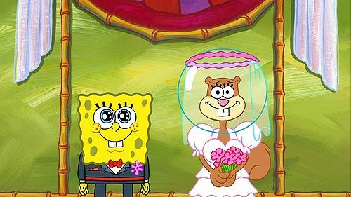 should spongebob marry sandy cheeks spongebob squarepants answers