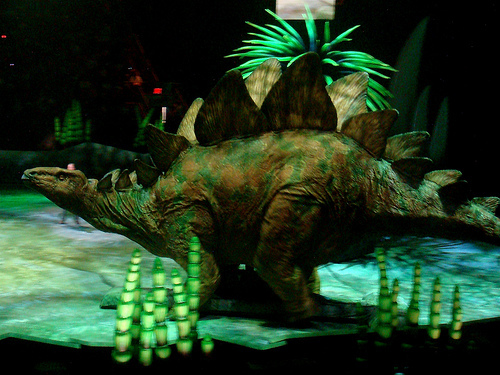 The Stegosaurus.