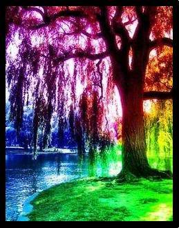 A colorful tree.