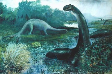 The brontosaurus. I think they are beautiful creatures. Strong and powerful, but they wouldn't hurt a fly. The brontosaurus' are one of the reasons why I think it's a pity that dinosauri are extinct. I'd Amore to see a bronto migration.