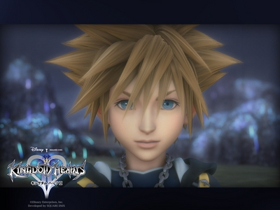 sora is just too cute!!! X3 ( i like roxas too though)