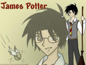 James Potter <3333 He is so sweet