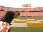 Tennessee, GO VOLS!