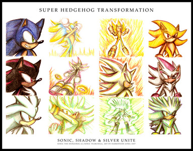 Sonic,Silver,Shadow,Mephilis,Sonia,Manic,Amy,Metal Sonic... That's all I know