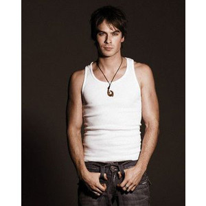 I like Damon cos he's a hot bad boy. He's handsome, cute & funny. Although, he's evil, he still has a sensitive part deep inside him, which makes'm plus lovable.