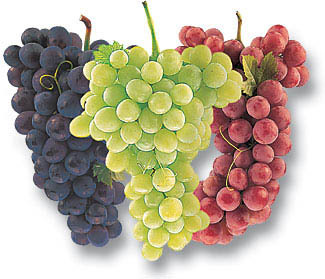Well i just adore grapes,especially if i'm feeling unwell !