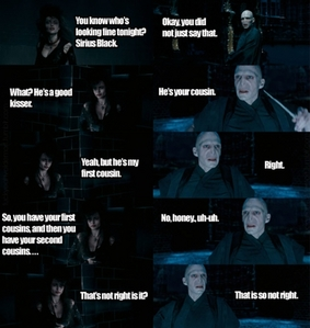 credit:F*ck Yeah Voldemort. Does it count as a picture?