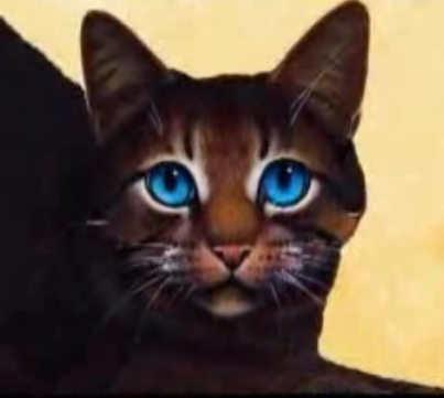 I would be in Thunderclan and my name would be Mistyfur. My mate would be Jayfeather!(even though hes a medicine cat...)And this is what i would basically look like: