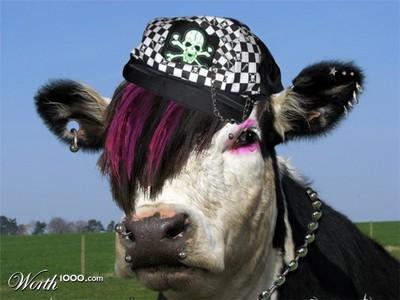 emo cow XD