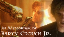 [b]Barty Crouch Jr.[/b] In all his depth and delicous irony, a brilliant and very intriguingly written [b][url=http://www.fanpop.com/spots/harry-potter/articles/46583/title/voldemort-barty-crouch-jr-how-alike]character that is being seriously over-looked[/url][/b]. One of the most interesting Death Eaters in my opinion. And most certainly the most important one for the story, so it's a pity how over-looked and forgotten he got.