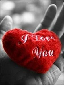 If I love آپ very much excuse me If آپ are who I just want excuse me Sorry if I count the Stars at night Sorry if I say much :Love آپ Sorry if I pick up Flowers for آپ every morning Sorry if I am very less for Your Eyes آپ are an Angel and if I am just an Adam Sorry if I Die and Alive for آپ If I be Ashamed with my Insanity Sorry if I put آپ under the care of GOD Sorry if I don't want to دکھائیں آپ to the Moon and don't want to say anything of آپ to the Night and don't give آپ to the Sky Sorry if I want آپ just for myself Sorry that I am Less but I fall in Love with آپ too Much