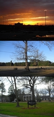 The most beautiful places I know is SC (top), my yard (middle), and my 집 state (I don't live in Whiteville though) Whiteville NC (bottom)! (took the pics myself, btw!)