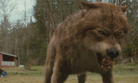Id say Werewolf. 1. Your a cute animal! 2. آپ don't have to drink blood 3. your always hot never cold 4. Faster 5. آپ can change back in forth when ever آپ want, vampires آپ stay a vampire for life 6. آپ can kill without getting in trouble! and theres many مزید to go with but Id say werewolf Hell yeah! I run with the Werwolves! WO! TEAM JACOB 4 LIFE!