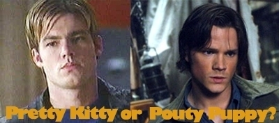 Here's my two Избранное actors, William Gregory Lee (left) and Jared Padalecki (right):