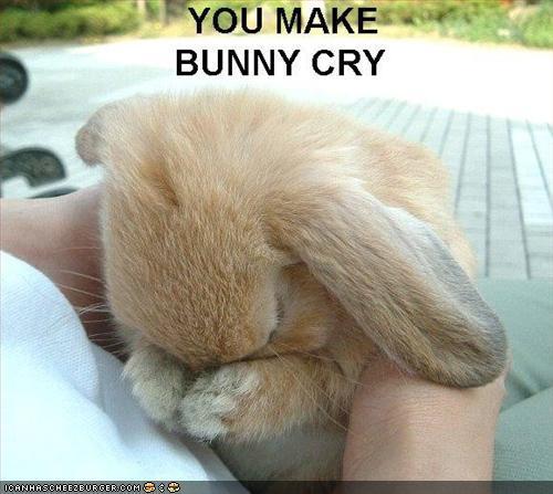 Bunny is sad TT_TT