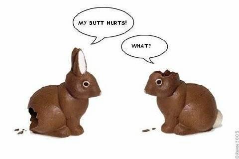 Mmm chocolate...