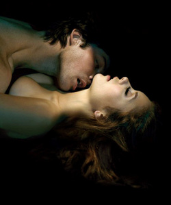 Damon and Elena - The Vampire Diaries  The most dangerous and sexy love story!