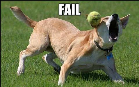 Fetch FAIL! xD