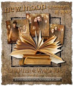 Let's Re-Read New Moon Together! Chapter 4