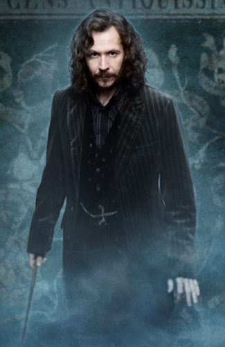 Sirius Black - this guy is amazing! Best character in Harry Potter really, he is such a nice man, levaing everything to Harry in his will. He cared for Harry so much like he was his father. R.I.P Sirius :(