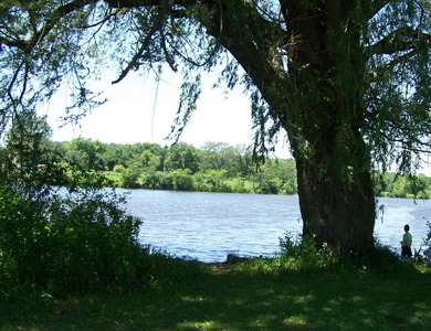 I live near here (Illinois) P.S: I didnt take this photo.