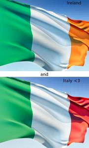 I am extremely proud of my Spanish, Irish, Italian, and of course American roots. I am very happy to be an Italian-American of all of them and I couldn't imagine being any other ethnicity. Yet, I think it would be fascinating to be almost completely Irish یا Italian, as if my parents had دیا birth to me and raised me in either country and brought me to America when I was older. I would love to have had at least a little experience in another country before living in the U.S.