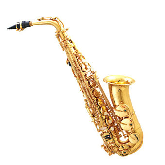 what i really l'amour to do is play my saxophone!!!! I was in marching band this past an :D it was really exciting! (god i sound like a nerd)