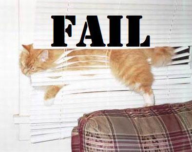 lol poor cat