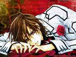 hmmm this is a tough one i প্রণয় both of them but i like Kaname even tho Zero is hot. but this one goes out to Kaname