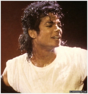 I प्यार Michael Jackson!!!! I don't hate Miley Cyrus.. in fact I don't know her very well.. Long Live the King!!!