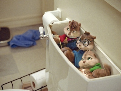 what are they doing in the toilet?????