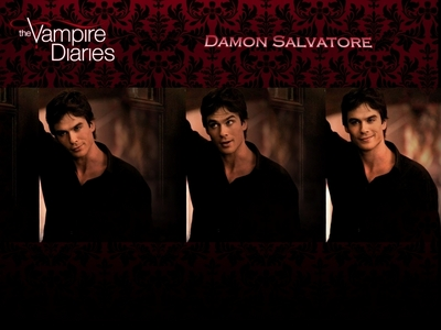 Damon!!!!!!!!!!!!...stefan is good...but Damon is absolutely hot!!!