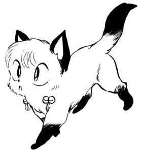 Shampoo Cat-chan! :3