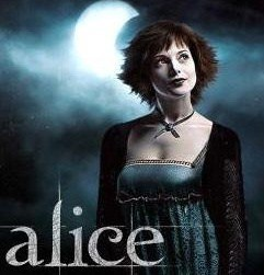 Can someone actually explain to me Alice's story?