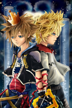 Roxas is better! Everyone disses him because he is Sora's Nobody, but I think he's his own person with his own Heart. Roxas is in the Organization XIII and has awesome friends! Like Axel and Xion. Two awesome Nodobies who deserve Hearts! So yeah. Roxas is way better than stupid annoying Sora. So what f Sora was the first Keyblade Master? He is the one that actually runs around swinging an oversized key! Roxas is the best!