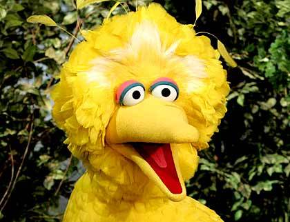 BIG BIRD(: IDK Y I DID THIS BUT OH WELL. SEASEME STREET!