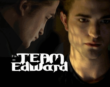 i like the 책 because of edward and i like the 영화 because of robert