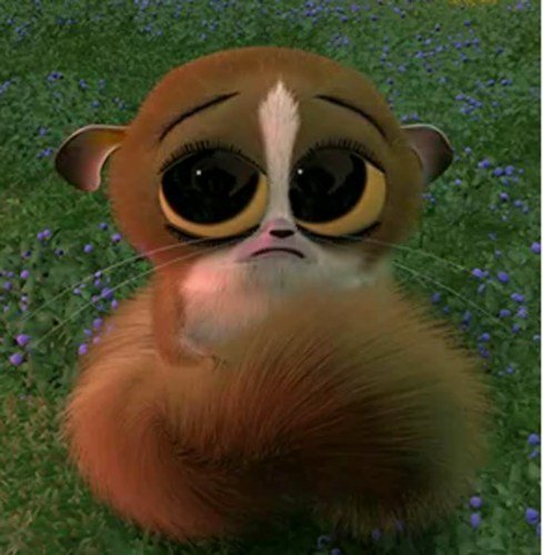 it was Mort! Don't fall for the cute buggy eyes......