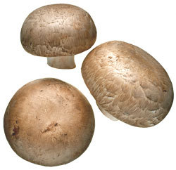 Mushrooms (2 eat)