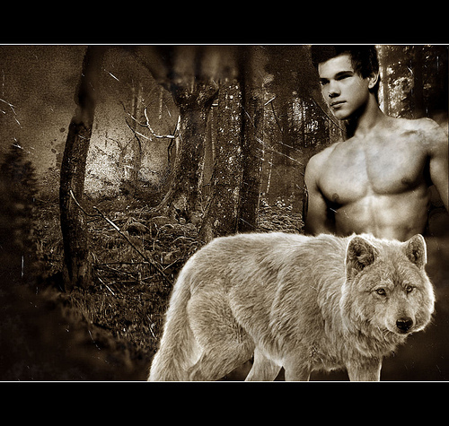 A Werewolf, no doubt. #1 They're warm, atau lebih acurately, hot. #2 They're loyal. I mean, they are like half dogs... Of course they're loyal. Besides, I just like Embry Call. And Jacob Black. But I like Embry better.