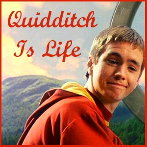 I 사랑 Harry Potter!! I 사랑 every part of the book, but I've always really enjoyed 읽기 the Quidditch scenes!! XD