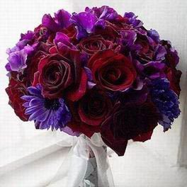 My favourite colour is blood red and dark purple