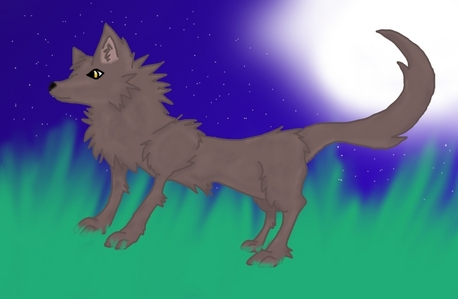 1-I Liebe Tiere 2-I Liebe drawing! 3-I really want to be a wolf 4-My Favorit color is silver 5-I think this picture I drew deserves some awsome sauce